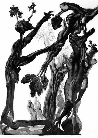 Salvador Dali, Las samobójców - Piekło, pieśń XIII